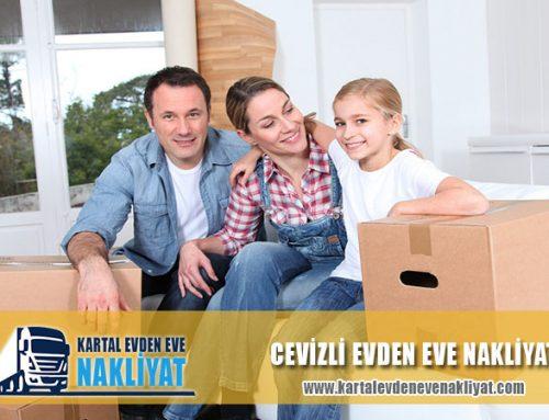 Cevizli Evden Eve Nakliyat